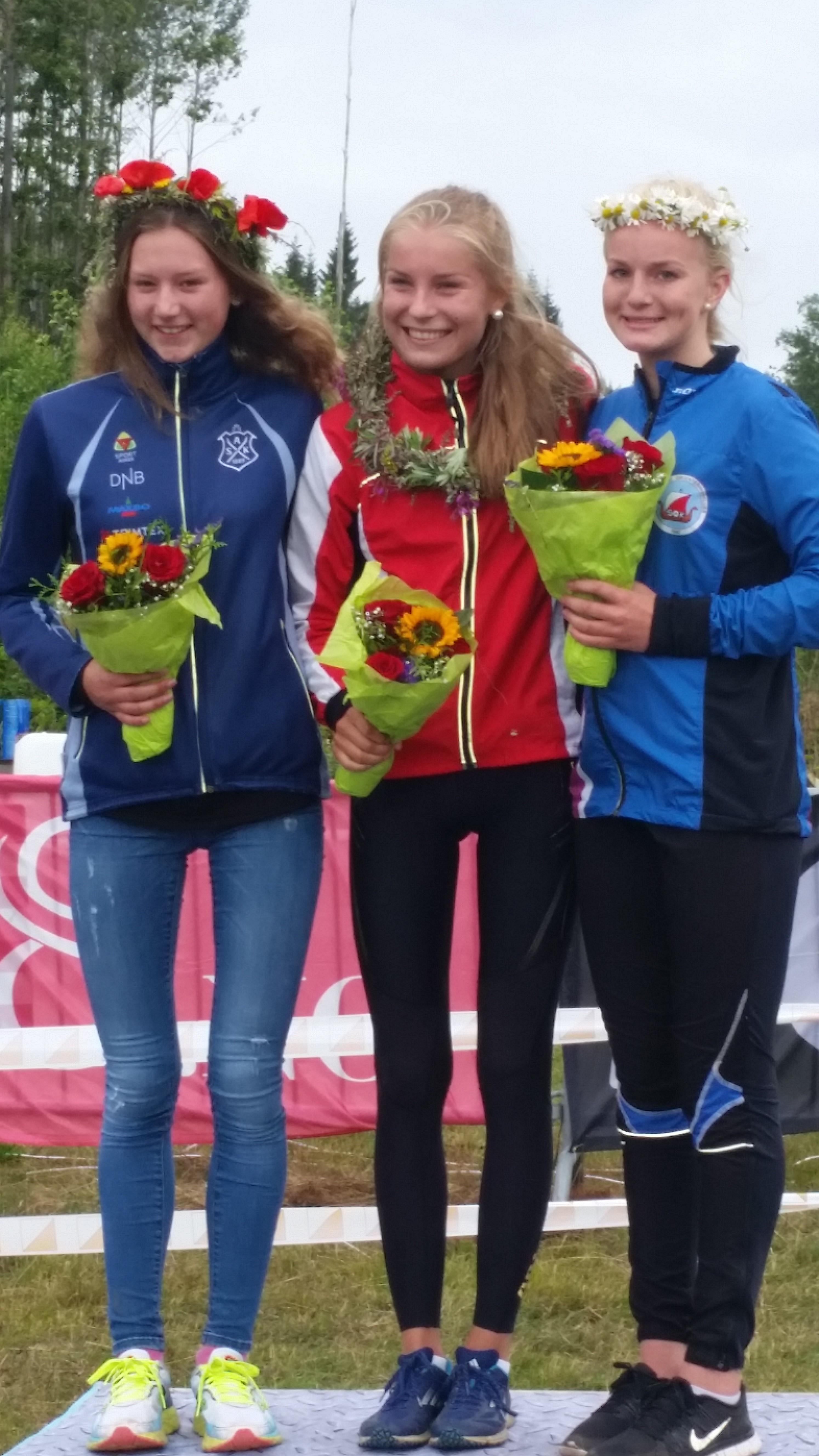 Hovedløpene i Larvik